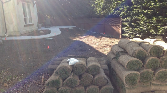 Turf and Sod Installations
