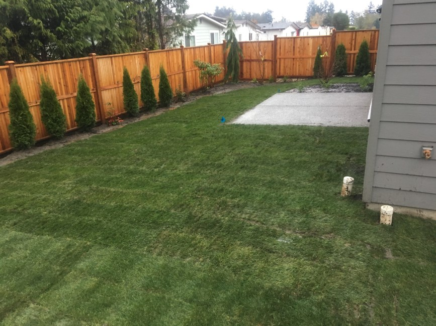 finished sod installation Sidney, BC.