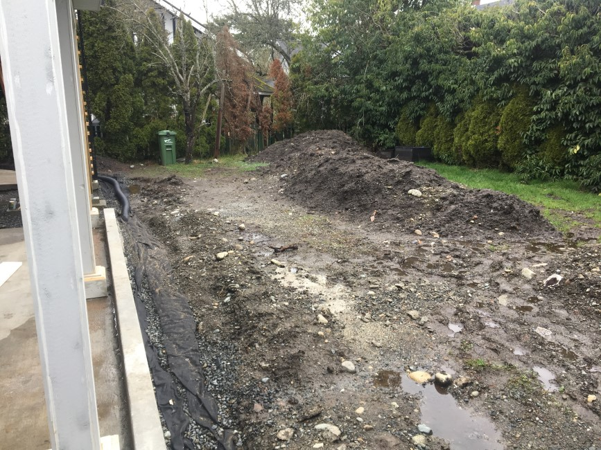 Removing soil and grading back yard for new lawn using grass seed.