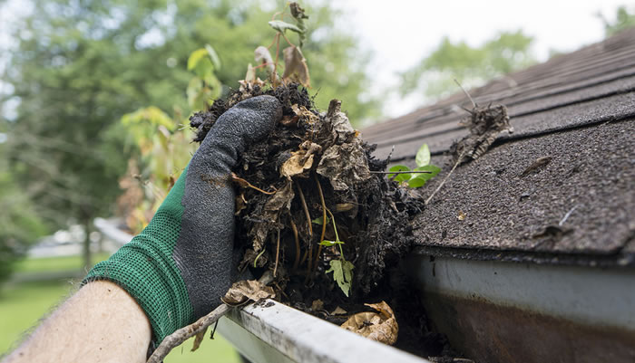 How Much Will It Cost To Clean My Gutters