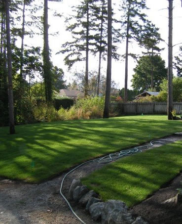 Lawn Mowing Service Sidney BC