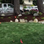Affordable Landscaping Projects