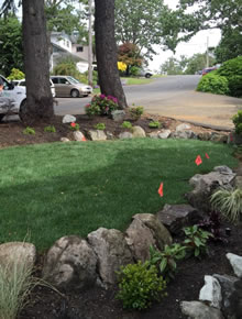 Turf and Sod Installation